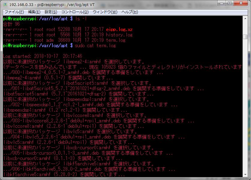 13_文字色_ラズパイ色